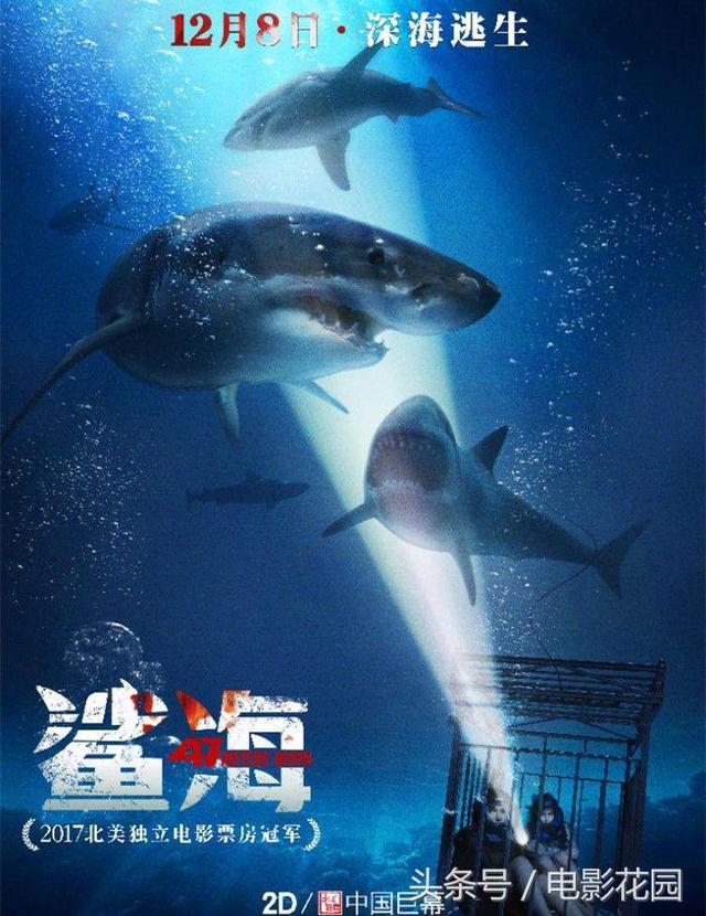 如果你喜歡冒險刺激,不可錯過這部鯊口求生的電影! - 每日頭條