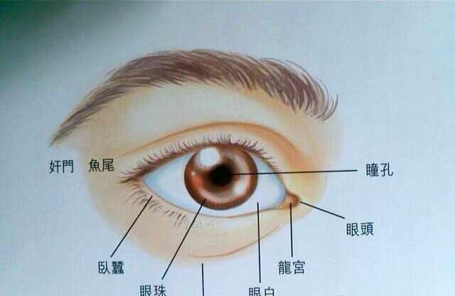 面相教學:眼睛面相定一生富貴貧賤 - 每日頭條