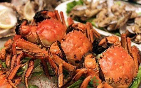 死蟹能不能吃 - 每日頭條