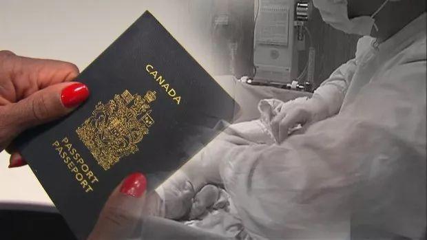為拿加拿大護照。中國遊客在這家醫院每天生一個孩子! - 每日頭條