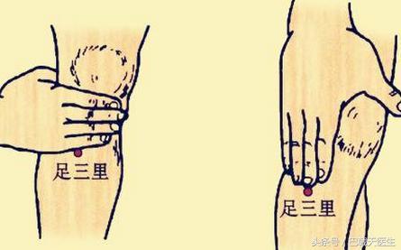 分享中醫針灸基礎知識,每日一穴:肚腹三里留 - 每日頭條