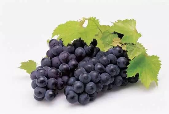 你種的葡萄在日本鮮食葡萄排名第幾?對號入座 - 每日頭條