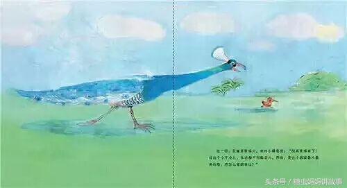 媽媽繪本故事 《孔雀和蜂鳥》講述了一隻蜂鳥遇見了一隻孔雀 - 每日頭條
