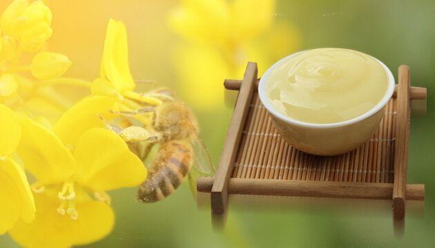 蜂王漿與放化療,癌癥患者福音! - 每日頭條