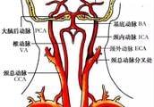 血管超聲常用英文縮寫。你記得多少? - 每日頭條
