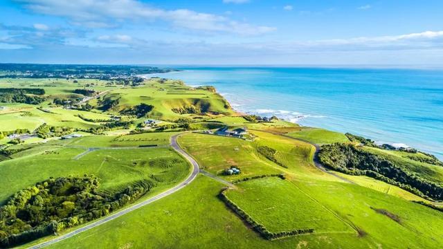 萬物凋零。天氣逐漸寒冷。但地球的另一端紐西蘭。花開成海 - 每日頭條