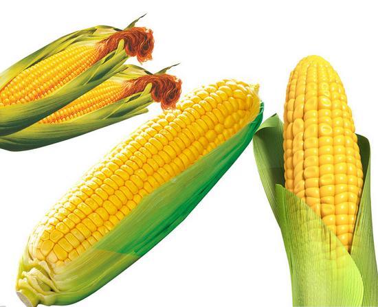 淺析玉米的營養功效 - 每日頭條