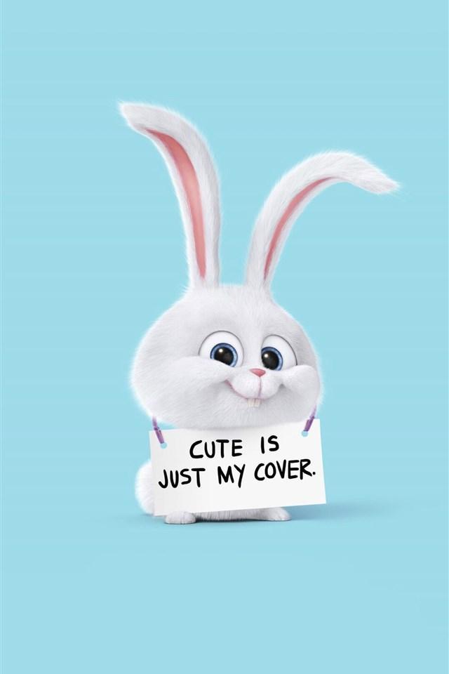 愛寵大機密。小兔子萌化你的內心 - 每日頭條