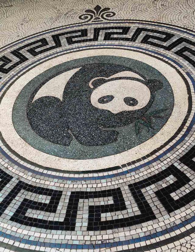 影像里的上海自然博物館老館:是自然,也是藝術的回聲 - 每日頭條