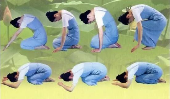 跪膝是大補肝臟、引血下行的絕妙方法。能減肥。可預防膝蓋磨損 - 每日頭條