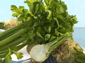 芹菜根怎麼吃 - 每日頭條