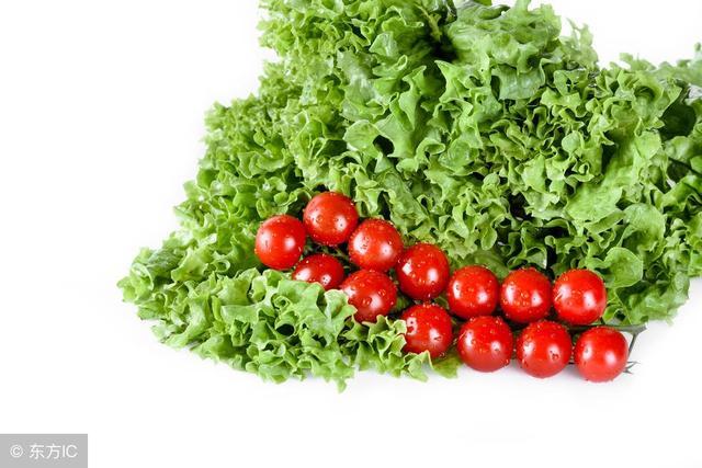 帶你了解油麥菜的功效與作用 油麥菜對人體都有什麼好處呢? - 每日頭條