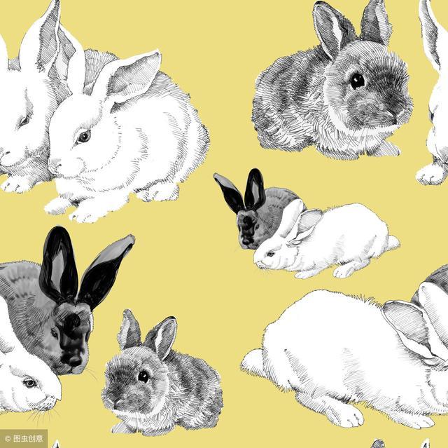 人窮不攀高親:75年兔兔人,3月20日後有一「難」,切勿因小失大 - 每日頭條