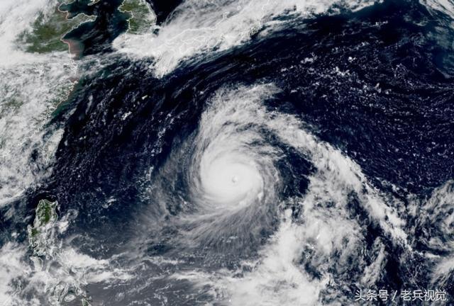 超強颱風「飛燕」成風王——預計9月4日登陸日本,登陸後移動速度加快至每小時55公里,翼長和尾部呈叉形的燕子,飛燕到達巴斯海峽並增強為一股颱風,影響不可估量 - 每日頭條