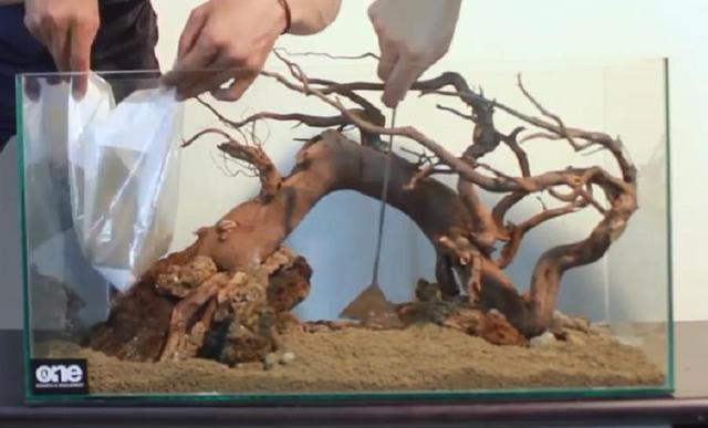 草缸可以一木成景?看完這個開缸教程。就知道魚缸造景的秘密了 - 每日頭條