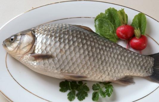 孕期吃什麼魚最補?最全吃魚方法 - 每日頭條