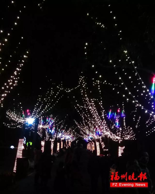 亮燈啦!福州元宵燈會美圖搶鮮看!最全賞燈攻略在這裡! - 每日頭條
