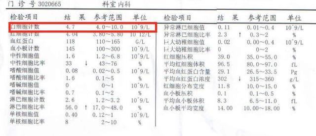 如何看懂血常規報告 - 每日頭條