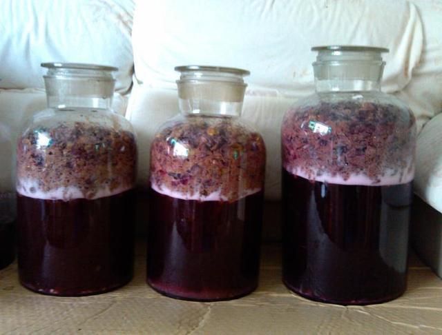 10歲女孩喝酒「炸裂食管」,自釀葡萄酒危險重重,怎麼不長記性 - 每日頭條
