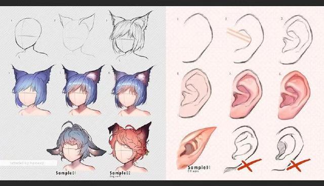 人的耳朵與獸化精靈耳朵對比畫法!cg原畫 - 每日頭條