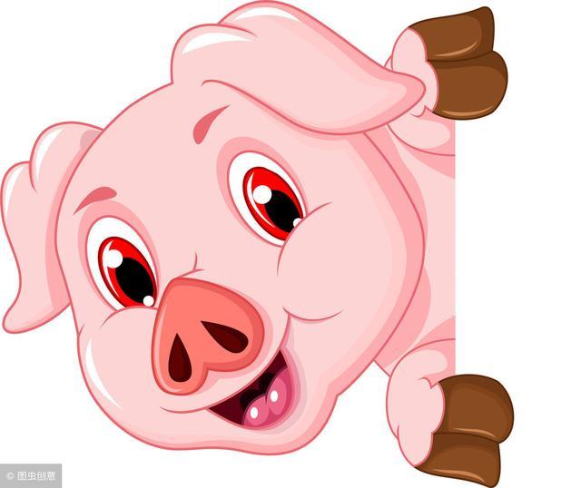 屬豬寶寶用這幾類字一定讓你寶寶幸福一生!值得收藏 - 每日頭條