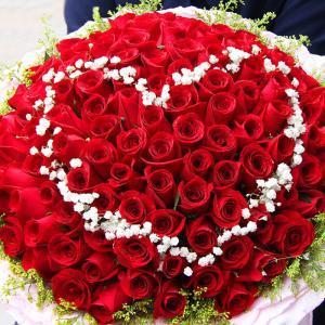 你所不知道的玫瑰種類和花語 - 每日頭條