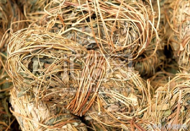 《我愛農村》山里挖回來的雞骨草 有利濕退黃 治黃疸肝炎 - 每日頭條