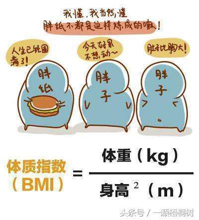 從這三件小事著手,輕鬆改善肥胖型高血壓 - 每日頭條