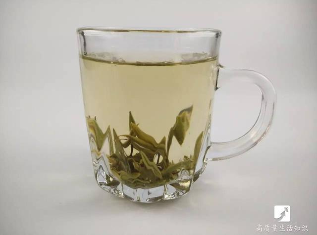 綠茶紅茶白茶黑茶你到底適合哪一種?如何保存?功夫茶如何沖泡? - 每日頭條