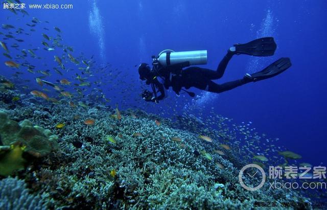 能下水的才是王道 三款潛水腕錶推薦 - 每日頭條