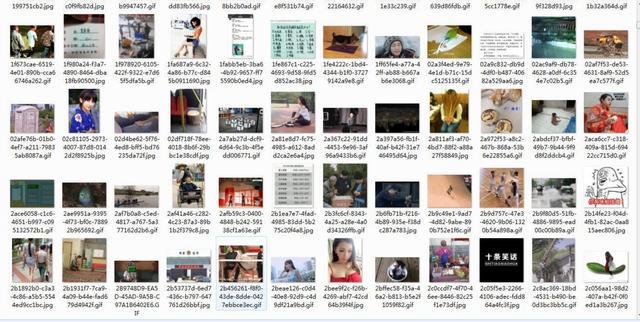 java爬蟲實現《今日頭條》搞笑動態圖片爬取 - 每日頭條