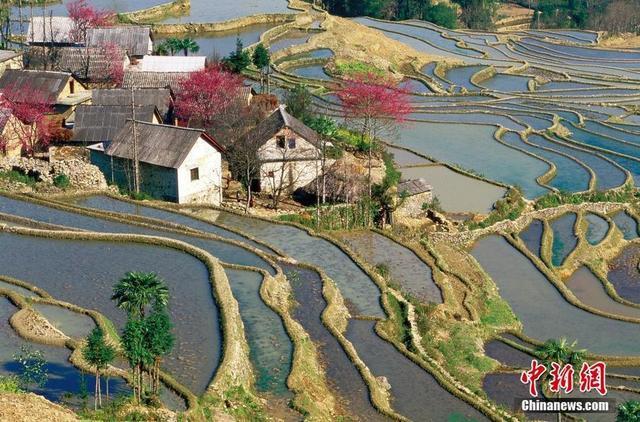 貴州梯田四季風景美如畫 - 每日頭條