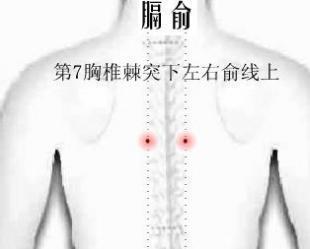 髒,腑,氣,血,筋,脈,骨,髓八大會穴的臨床應用 - 每日頭條