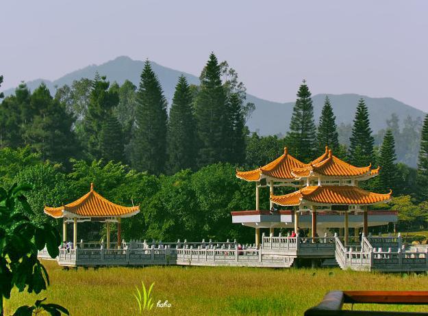 深圳周邊游—— 看看這個漁村有啥好玩的? - 每日頭條