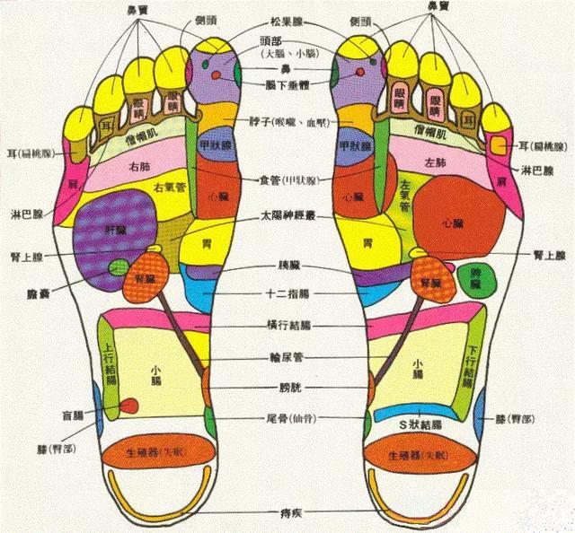 保肝,防癌,護膽,活淋巴!快給腳部做個按摩吧! - 每日頭條