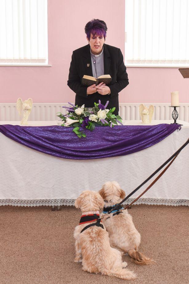 英國有位「寵物牧師」,她讓寵物們有尊嚴地離去 - 每日頭條