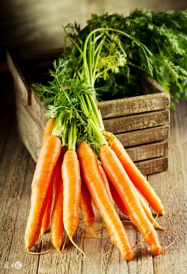 冬季手腳冰涼要食療。推薦7類食物禦寒 - 每日頭條
