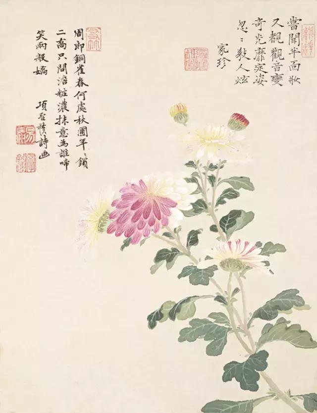 花落無聲,人淡如菊(2) - 每日頭條