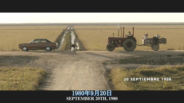 圖解電影:沼澤地 不簡單的失蹤案 - 每日頭條