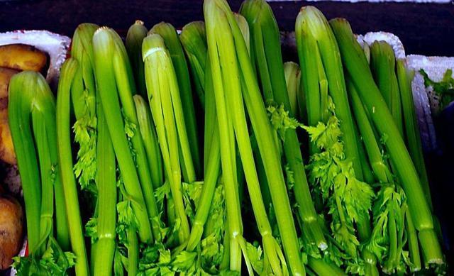 胃不好吃什麼菜養胃。最養胃的蔬菜。保你的胃健康 - 每日頭條