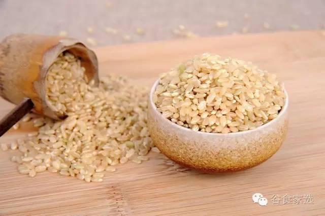 最頂級的五常大米都不一定比最普通的糙米營養成分多 - 每日頭條