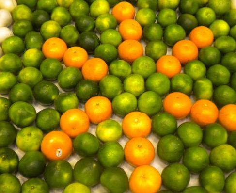 桔子、橘子和柑子的區別 - 每日頭條