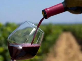 紅酒越喝越胖?葡萄酒熱量大解析 - 每日頭條