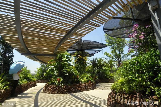 屋頂綠化容易漏水,滲水,難養護? 如何全方位解決屋頂綠化痛點 - 每日頭條