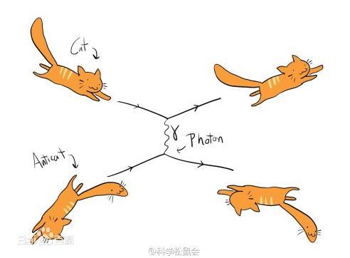 薛丁格的貓和量子自殺 - 每日頭條