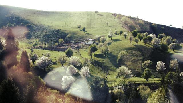 民俗風情的那拉提草原 - 每日頭條