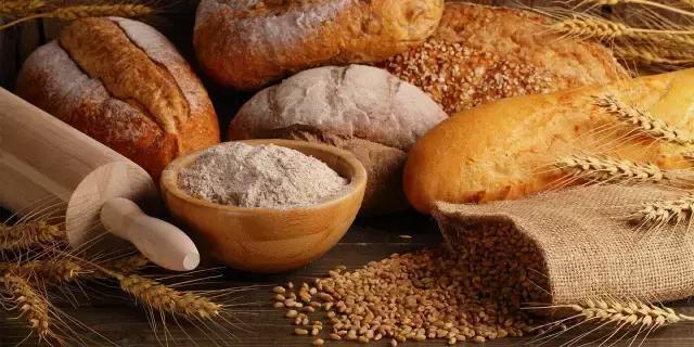 食薈|麵包的發明及發展 - 每日頭條