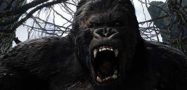 現實版《金剛》考古發現3米巨猿 - 每日頭條