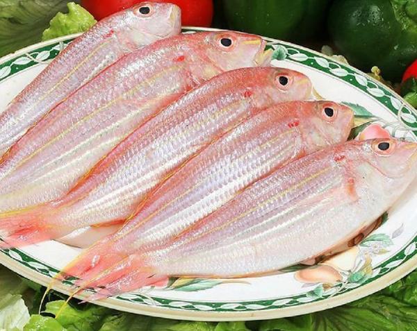 紅衫魚是什麼魚 紅衫魚的營養價值 - 每日頭條