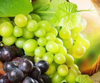 並不是所有水果都能放冰箱。夏季水果保鮮大全! - 每日頭條